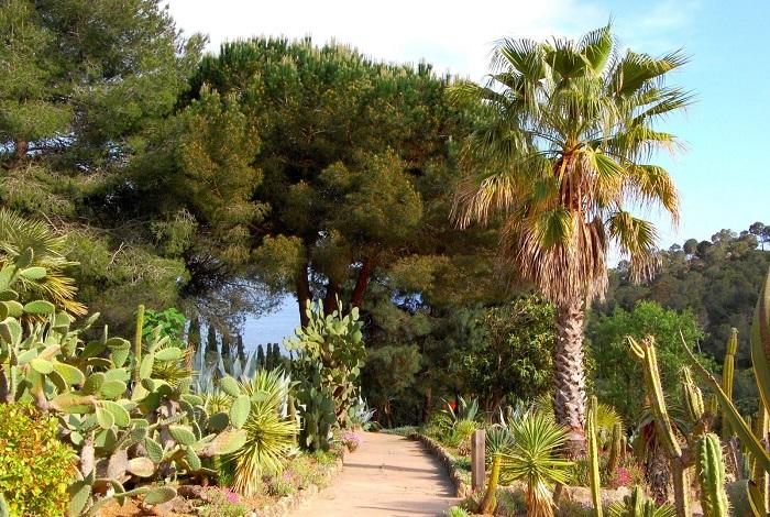 Ботанический сад Пинья-де-Роса (Pinya de Rosa)