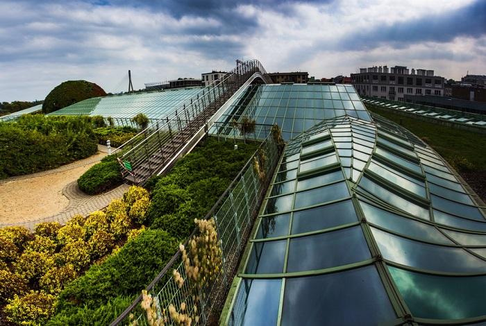 Ботанический сад на крыше Варшавской библиотеки