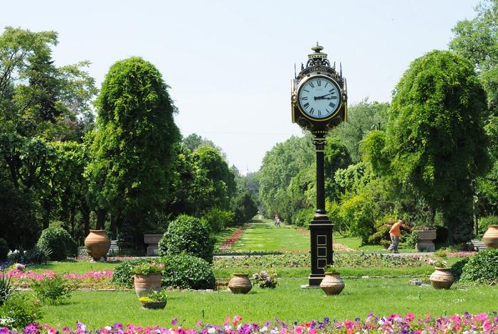 Сад Чишмиджиу