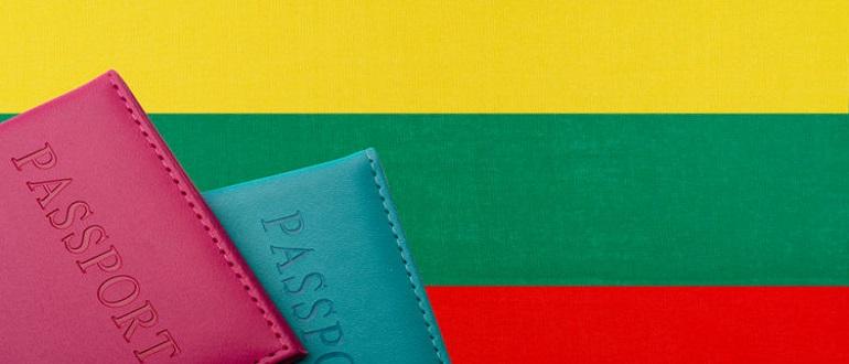Заполнение анкеты на шенгенскую визу в Литву: требования и образец 2020 года