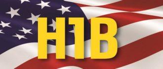 Виза H1B в США