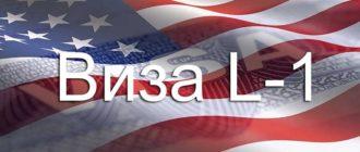 Виза L-1 в США